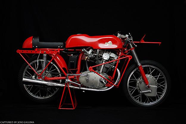 ducati 125 grand prix motorcycle road racer grease n gasoline. Black Bedroom Furniture Sets. Home Design Ideas